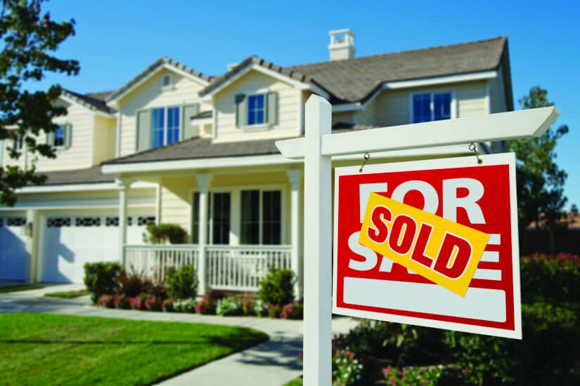 Cameron Nicholls, Nicholls & Co Estate Agents, real estate, property invest, property sales