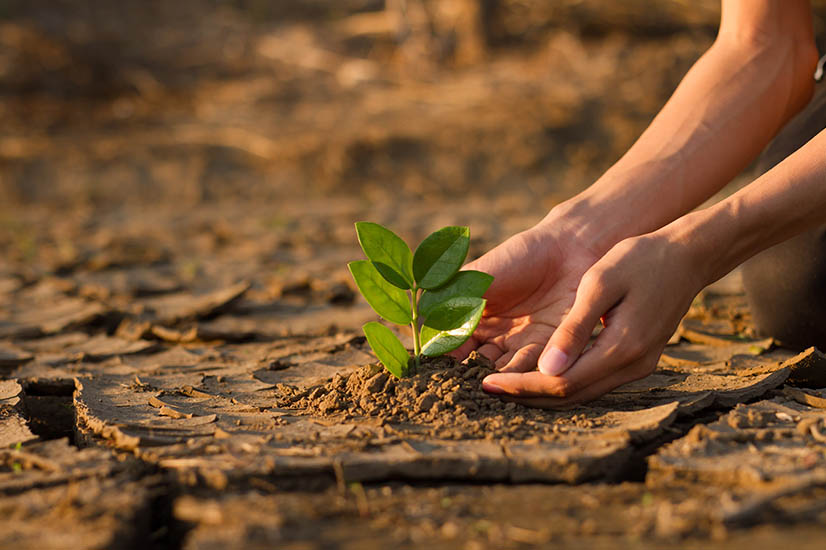 Coalition commits to climate resilience