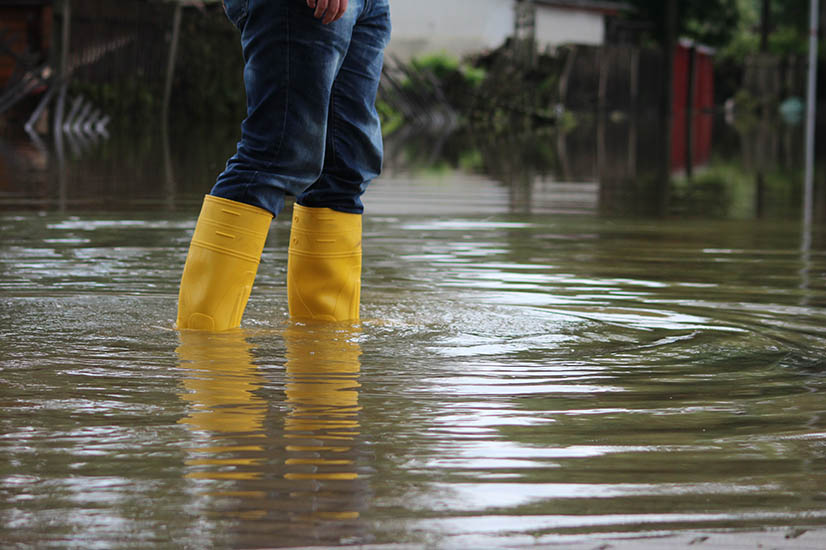 Guide to NSW flood financial aid: From the banks to insurers
