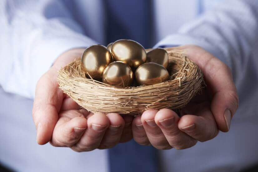 Investing, investment, golden eggs