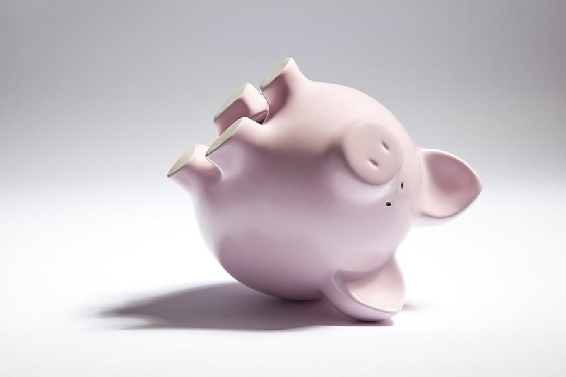 Piggy bank budget