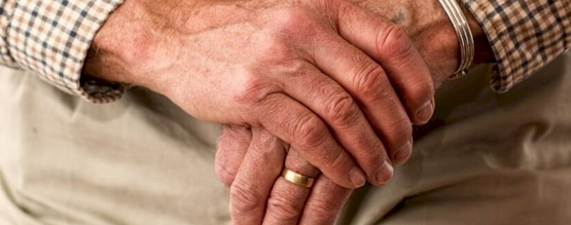 fight against elder abuse
